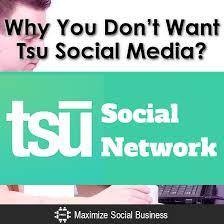 結局、稼げると話題だったSNS TSU(スー)稼げないし、なんだったの?