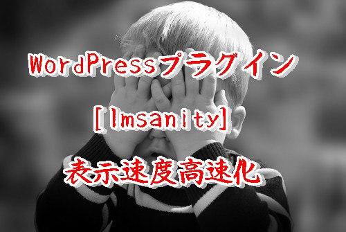 [WP]Imsanityの設定と使い方!250以上の画像をリサイズ
